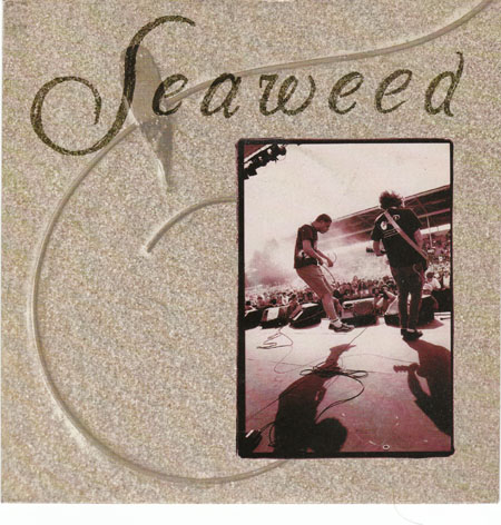 Seaweed Discography Go Your Own Way Pette